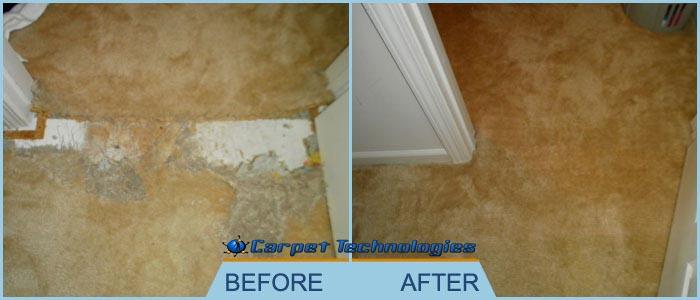 Carpet Cleaning Franklin Tn Carpet Technologies Carpet