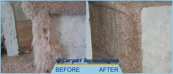 Carpet Cleaning FranklinTN Technologies Gallery