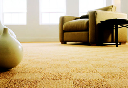 Carpet cleaning Franklin,TN | Carpet Technologies | Services